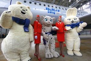Sochi 2014 Olympic Partner